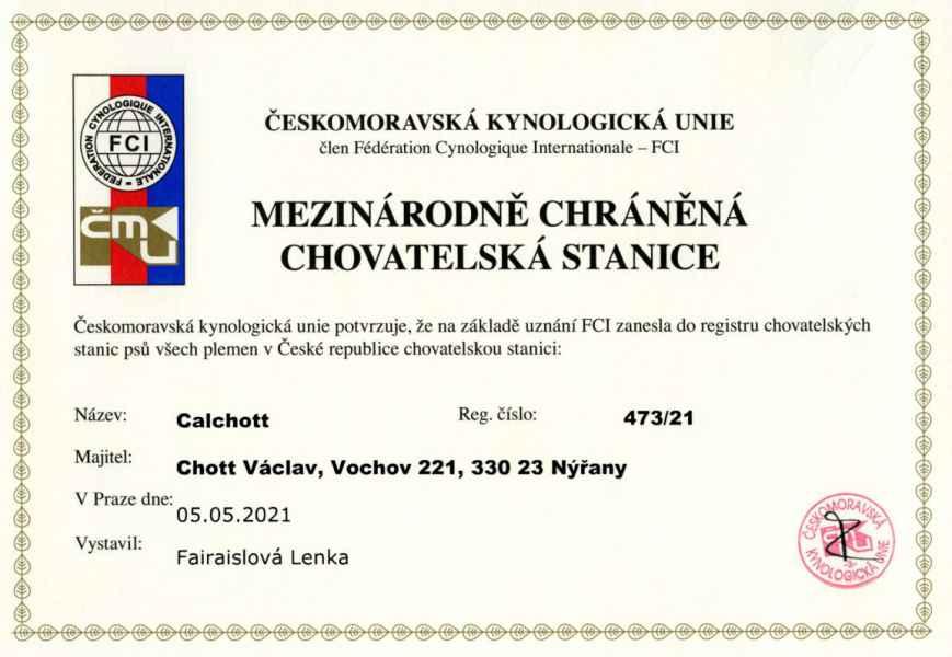 Certifikát chovatelské stanice – appenzelský salašnický pes